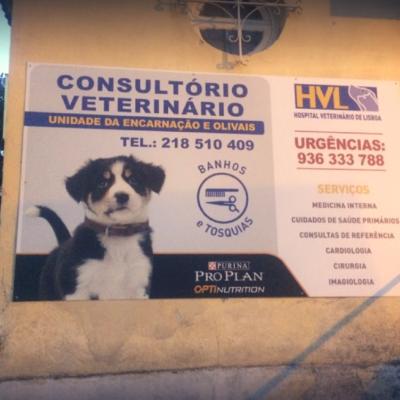 http://hospitalveterinario.eu/wp-content/uploads/2018/04/HVL-O-Hospital-website-400x400.png